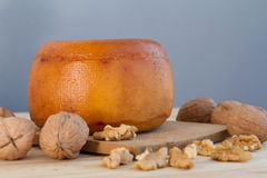 Cheese wheel with nuts Stock Images