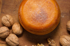 Cheese wheel with nuts Royalty Free Stock Image
