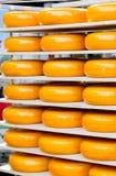 Cheese Wheel on shelves Royalty Free Stock Photo