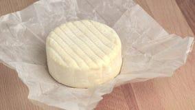 Cheese wheel stock video