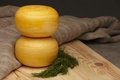 Cheese wheels Stock Photo