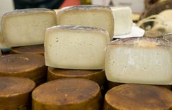 Cheese wheels cut. Cheese wheels for sale in an open market in Italy stock image
