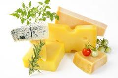 Cheese on white background Stock Photos