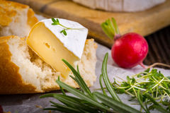 Cheese with white mold, radish, grapes and baguette with herbs Royalty Free Stock Photos