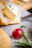 Cheese with white mold, radish, grapes and baguette with herbs Stock Images
