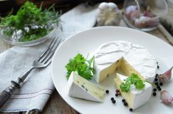 Cheese on a white plate Stock Image