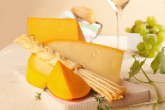 Cheese and wine. Stock Images