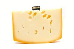 Cheese With Flash Memory Card Stock Photo