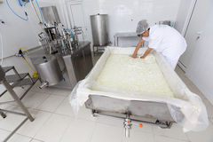 Cheese worker in a diary creamery Royalty Free Stock Photography
