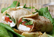 Cheese wrap detail Stock Photography