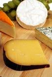 cheeseboard荷兰扁圆形干酪 库存照片