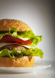 cheeseburger κινηματογράφηση σε πρώτ&o Στοκ Εικόνες
