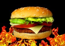 Cheeseburger images stock