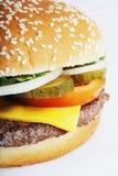 Cheeseburger. Closeup of a cheeseburger with cheddar cheese royalty free stock image