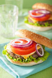 Cheeseburger with beef patty cheese lettuce onion tomato Stock Photography
