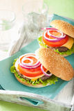 Cheeseburger with beef patty cheese lettuce onion tomato Royalty Free Stock Images
