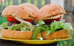 Cheeseburger casalinghi Immagini Stock