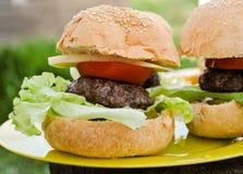 Cheeseburger casalinghi Fotografie Stock