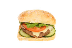 Cheeseburger in a ciabatta roll stock photography
