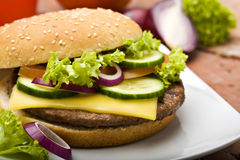 Cheeseburger close-up. Cheeseburger with salad, tomato, and cucumber slices, red onion rings, salad, close-up Royalty Free Stock Photos
