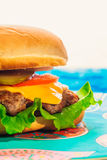 Cheeseburger close-up on a plate.  Stock Images
