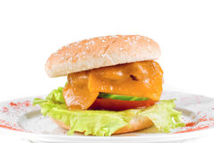 Cheeseburger closeup Royalty Free Stock Photography