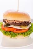 Cheeseburger con el slaw del col Fotos de archivo libres de regalías
