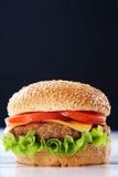 Cheeseburger con los tomates y la lechuga fotografía de archivo libre de regalías