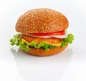 Chiken hamburger. Delicious hamburger isolated on white background with reflection Stock Image