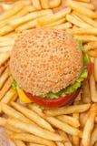 Cheeseburger e fritture saporiti Fotografia Stock Libera da Diritti