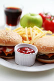 Cheeseburger and french fries Royalty Free Stock Photography