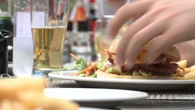 Cheeseburger and friends stock footage