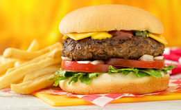 Cheeseburger and Fries. A classic style cheeseburger with beef, cheese, lettuce, tomatoe, onion, mustard, ketchup, and relish with french fries Stock Images