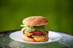 Cheeseburger grande com o bolo melty da semente do queijo cheddar e de sésamo fotos de stock royalty free