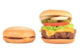 Cheeseburger and hamburger. Stock Photography