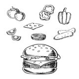Cheeseburger isolado com ingredientes frescos ilustração do vetor