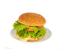 Cheeseburger in a plate Stock Photo