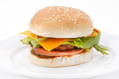 Cheeseburger on the plate Royalty Free Stock Images