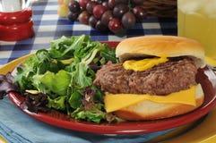 Cheeseburger and salad Stock Images