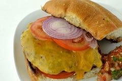 Cheeseburger/salsa di Chedder Fotografia Stock