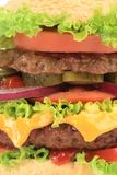 Cheeseburger saporito Immagine Stock
