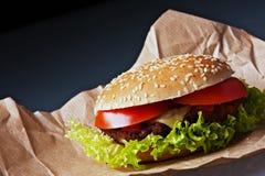 Cheeseburger savoureux Images stock