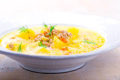 Cheeseburger soup ,mincemeat and cheese soup. Royalty Free Stock Photo