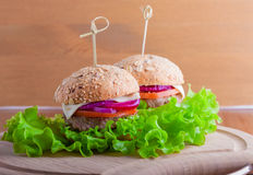 Cheeseburger with tomato, onion and green salad Royalty Free Stock Photos