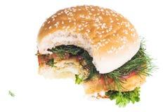 Cheeseburger on white Stock Photos