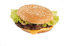 Cheeseburger. On a white background isolated Royalty Free Stock Image