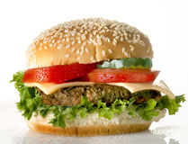 Cheeseburger on white. Background with tomatoes Royalty Free Stock Photo