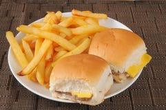 Cheeseburgers och småfiskar Royaltyfri Foto