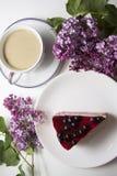 Cheesecake 12 βακκινίων Στοκ φωτογραφίες με δικαίωμα ελεύθερης χρήσης
