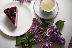 Cheesecake 10 βακκινίων Στοκ Εικόνες
